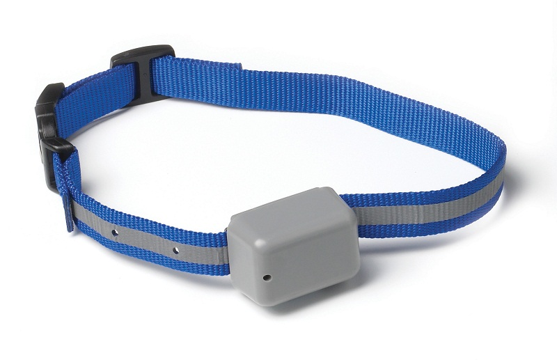 Innotek Rechargeable Fence Collar Dog Goodies